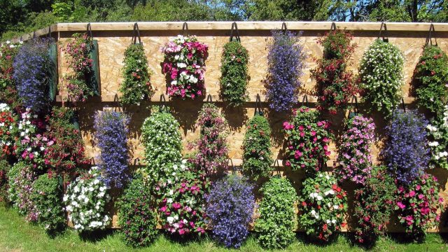 Gardening events in Oxfordshire and beyond in 2019
