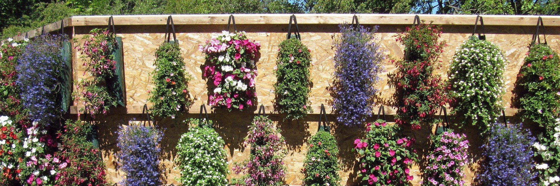 2019 Gardening events in Oxfordshire and beyond