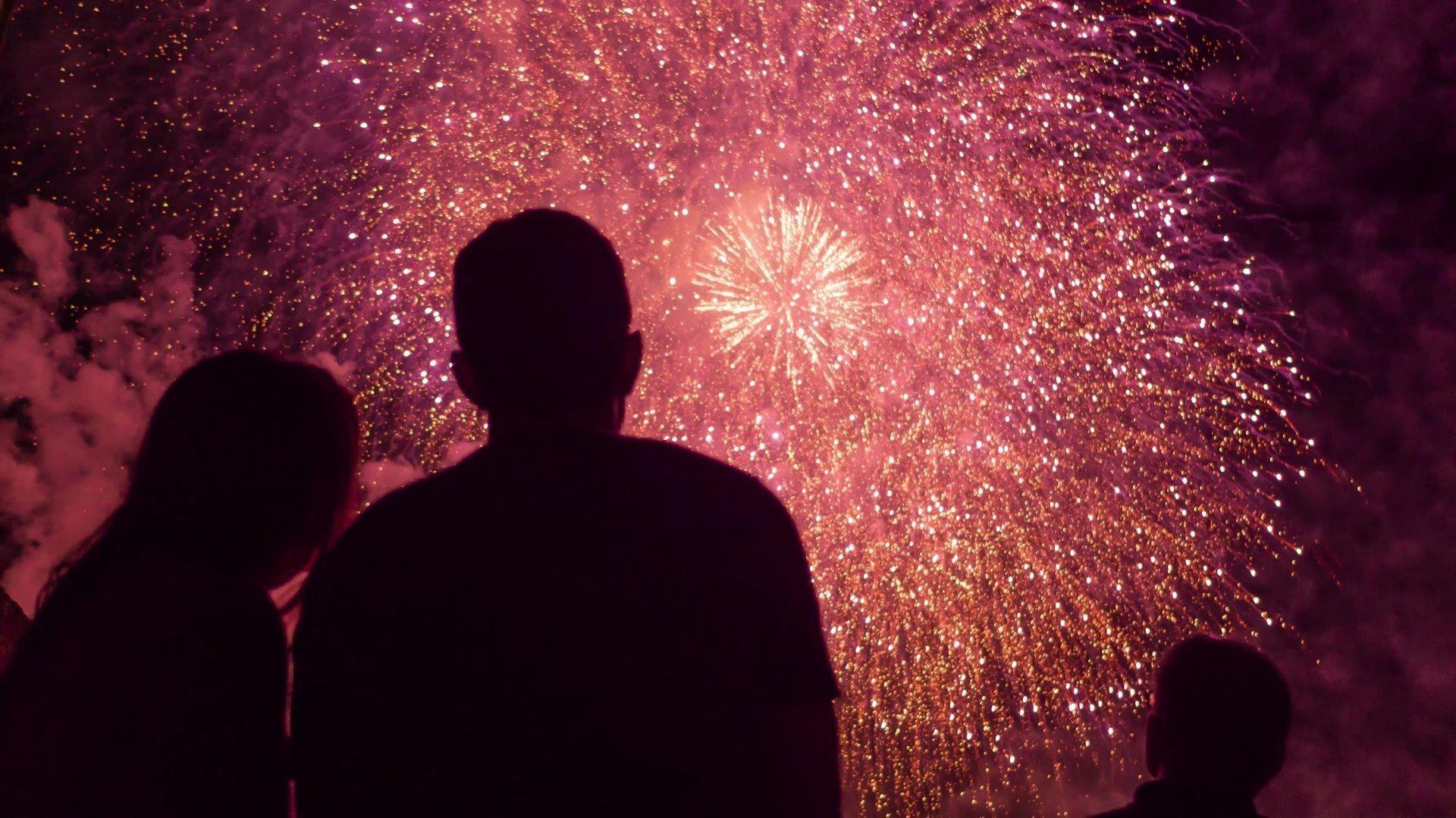 Abingdon Bonfire & Fireworks 2020 - Gallery Image 03