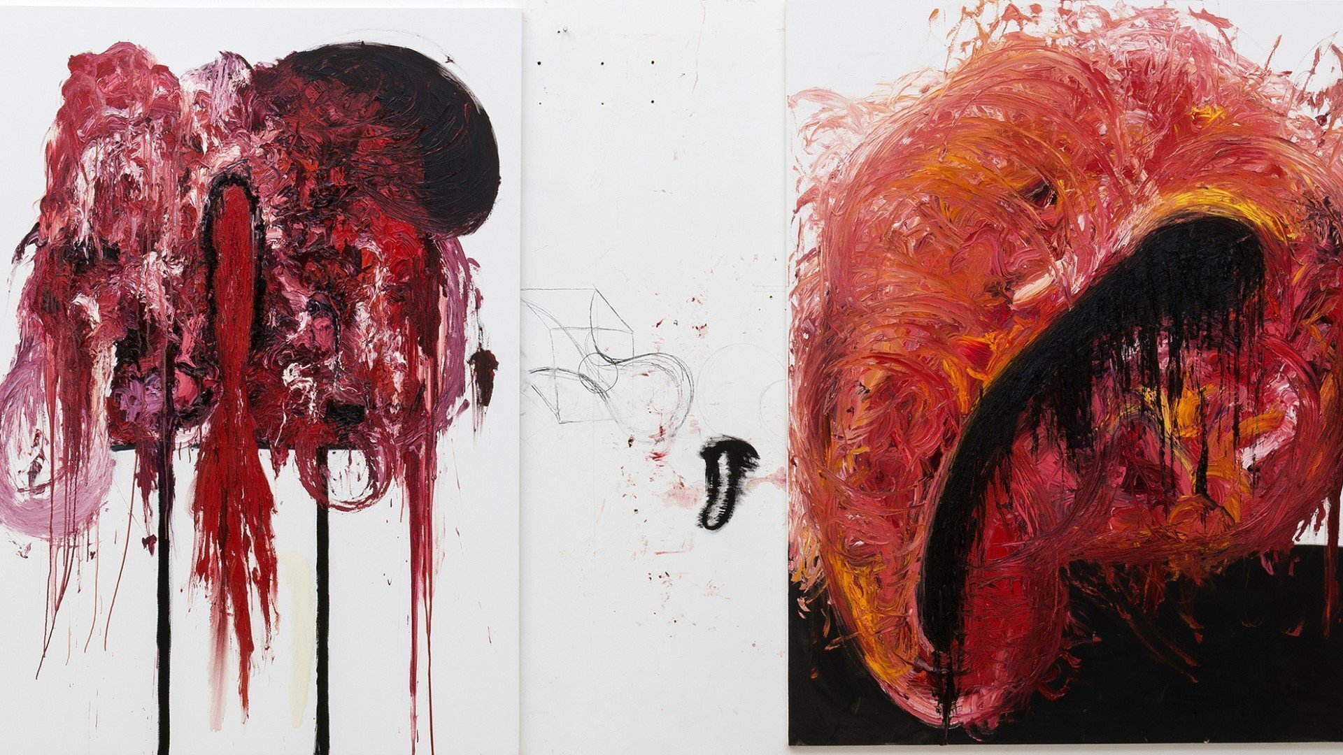 Anish Kapoor: Painting Exhibition at Modern Art Oxford