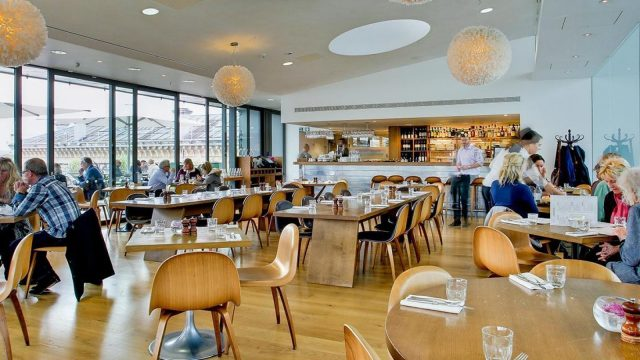 Ashmolean Cafe and Rooftop Restaurant Oxford
