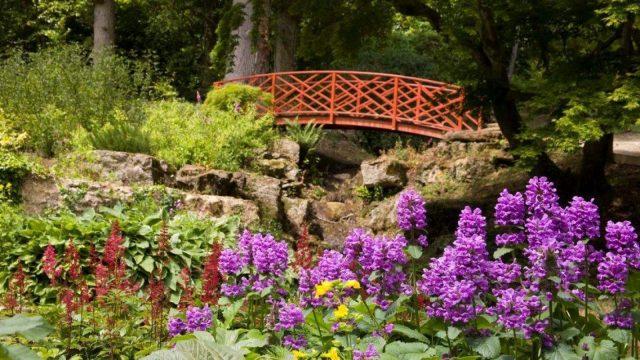 Batsford Arboretum & Garden Centre, Gloucestershire