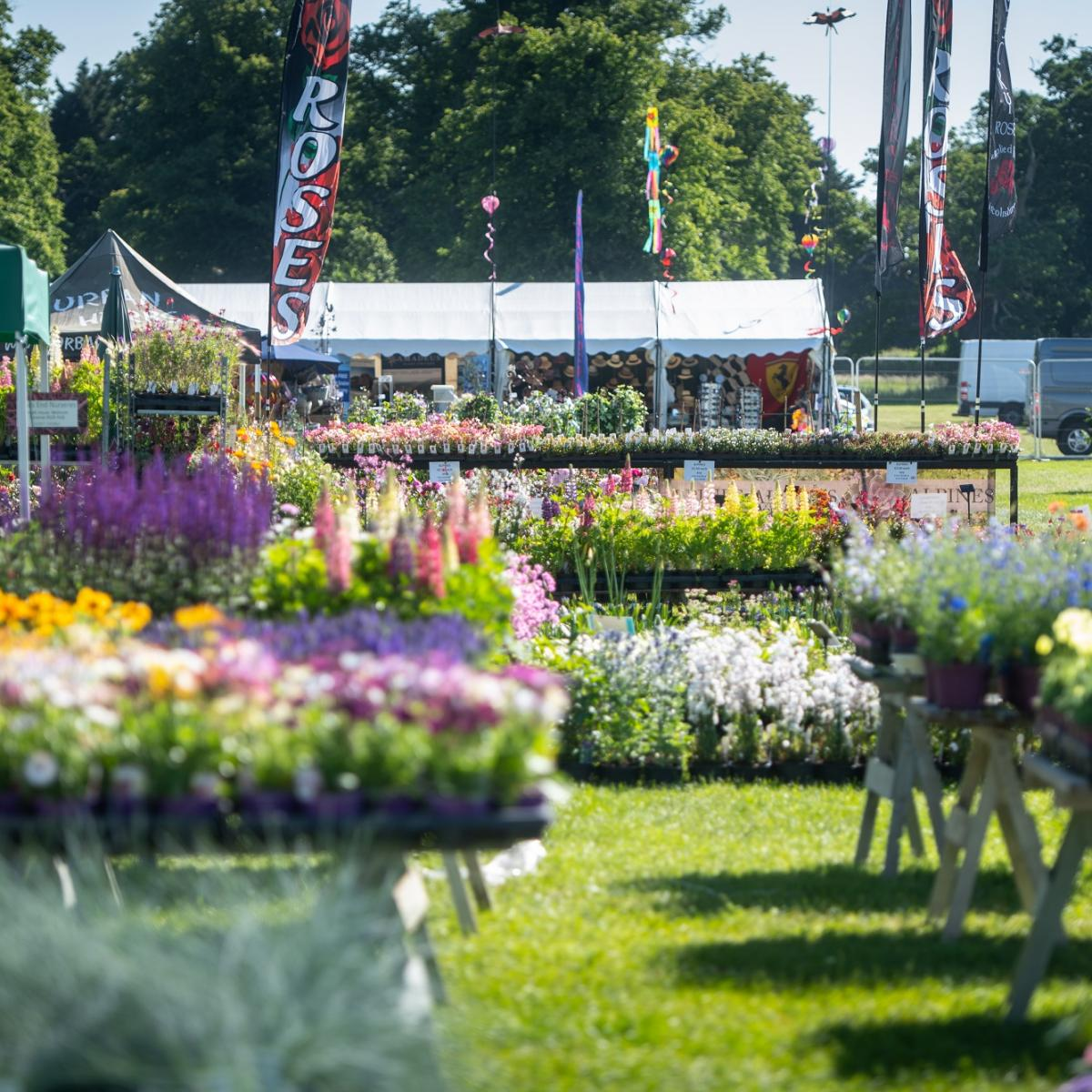 Blenheim Palace Flower Show 2021 - Gallery Image 01
