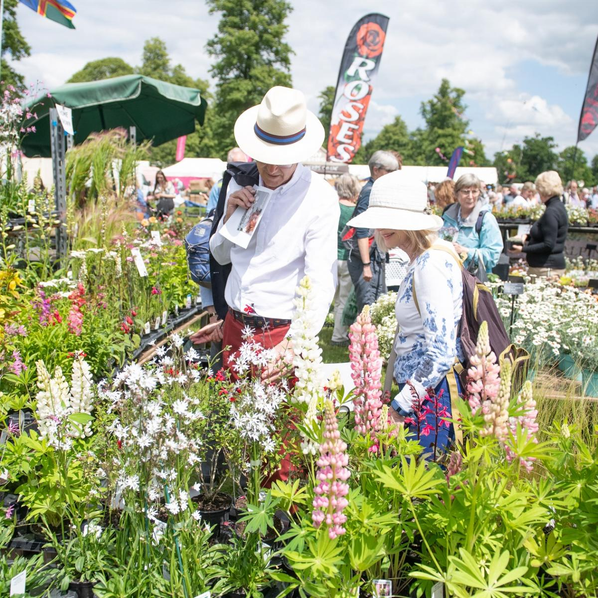 Blenheim Palace Flower Show 2021 - Gallery Image 02