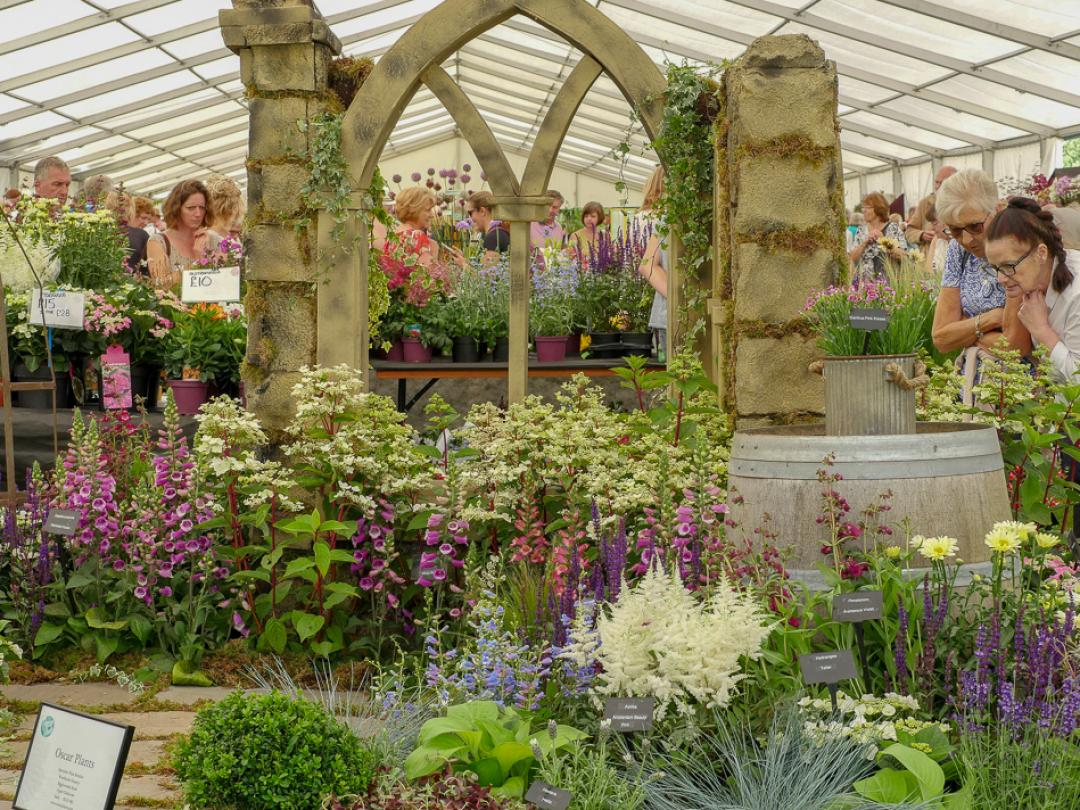 Blenheim Palace Flower Show 2021 - Gallery Image 05