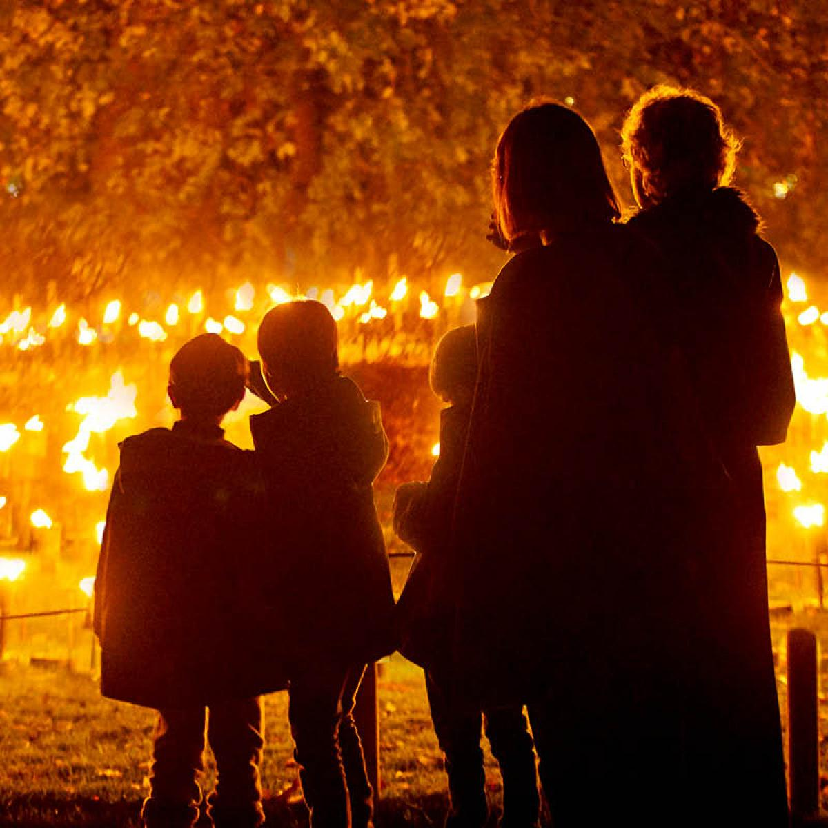 Blenheim Palace Illuminated Light Trail 2020 - Slider Image 2