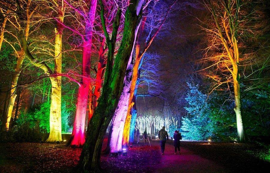 Blenheim Palace Illuminated Light Trail 2020 - Slider Image 5
