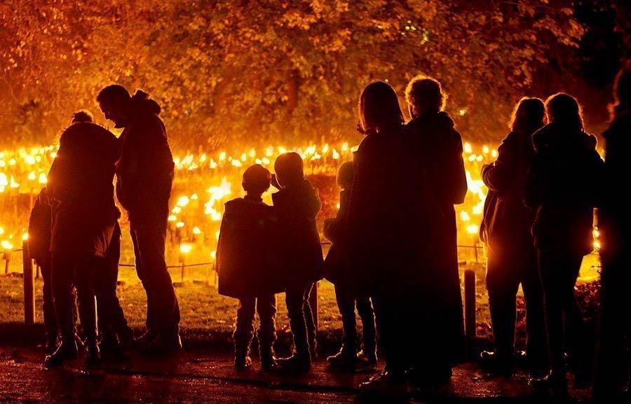 Blenheim Palace Illuminated Light Trail 2020 - Slider Image 6