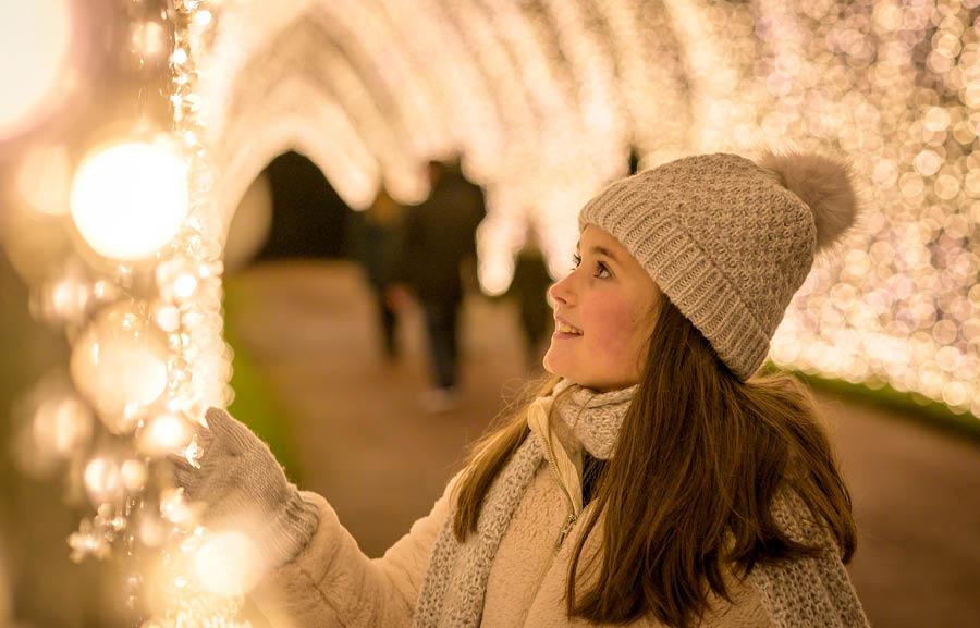 Blenheim Palace Illuminated Light Trail 2020 - Slider Image 7