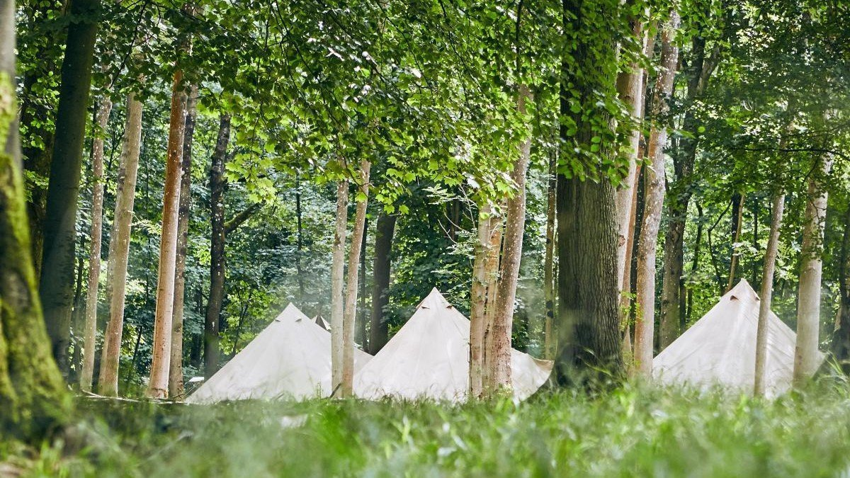 Camp Wilderness at Blenheim Palace