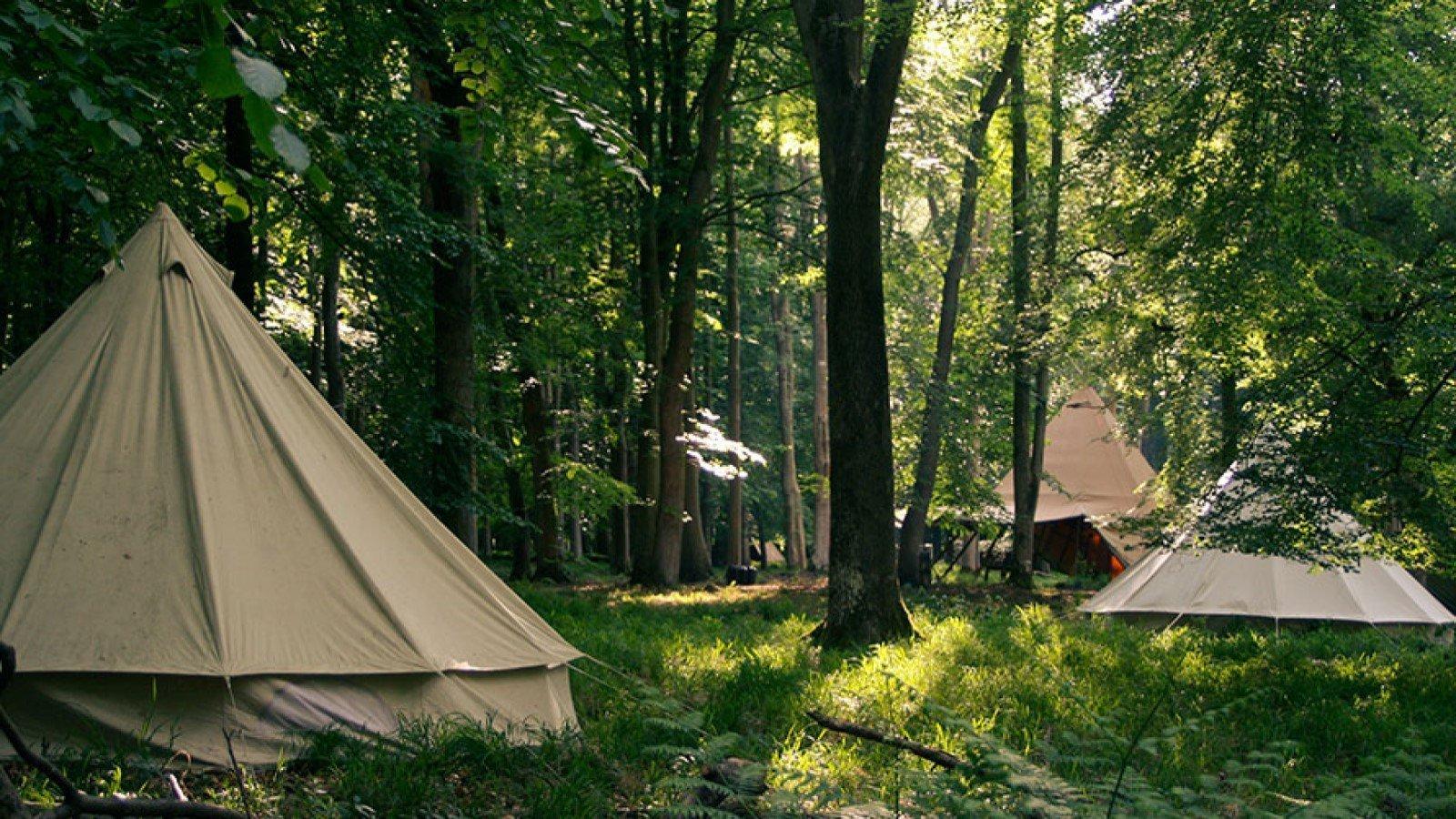 Camp Wilderness at Cornbury Park