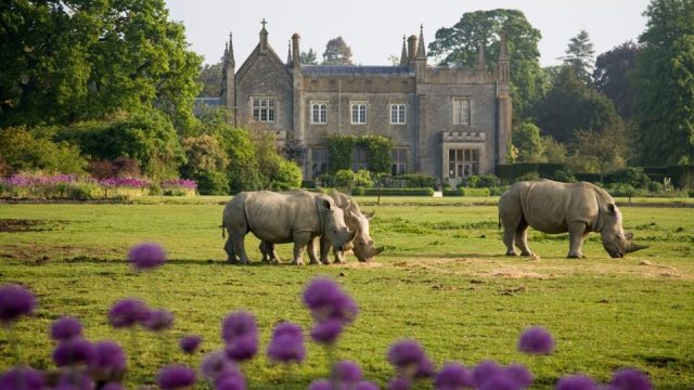 Cotswold Wildlife Park & Gardens