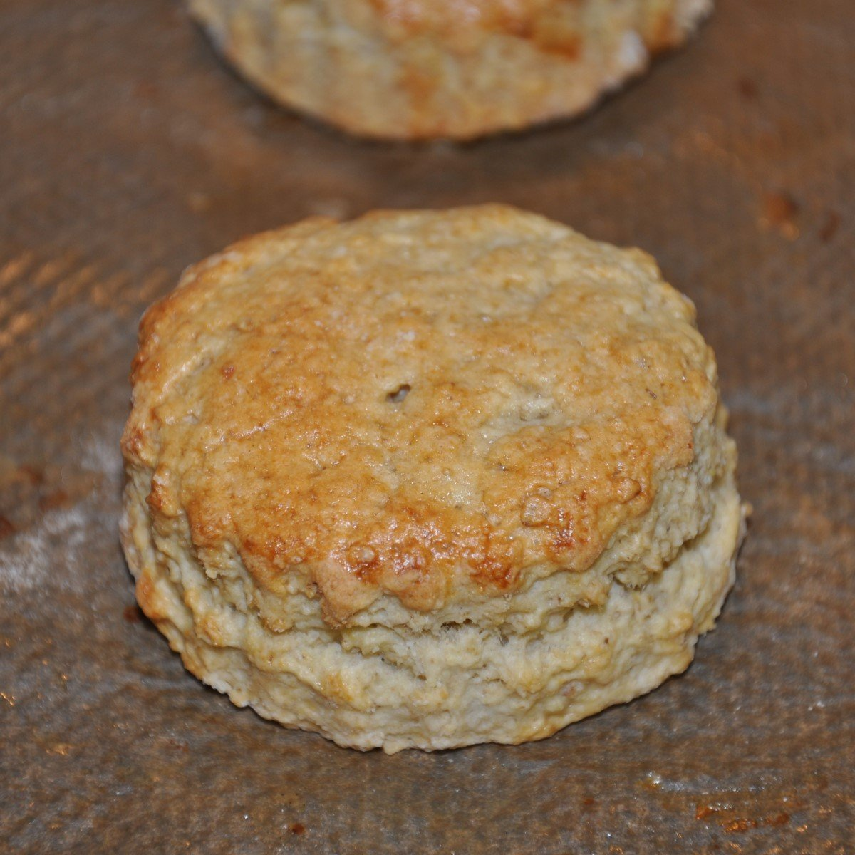 Easy Oaty Scones Recipe