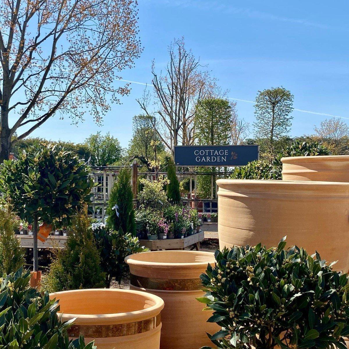 Garden centres to visit in Oxfordshire - Burford Garden Company