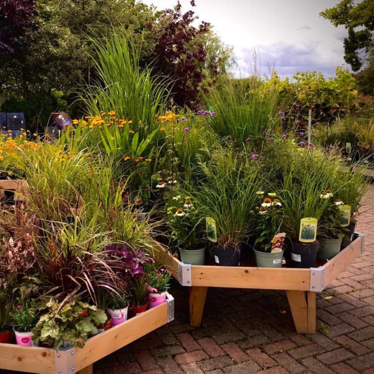 Garden centres to visit in Oxfordshire - Charlbury Garden Centre