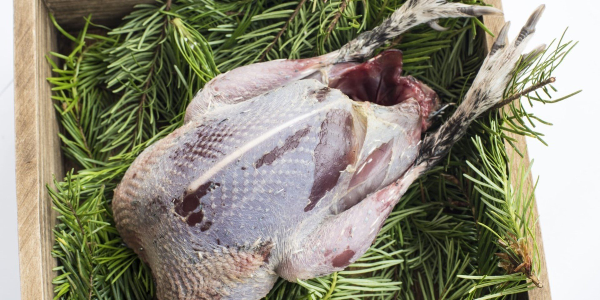 Grouse Prepared