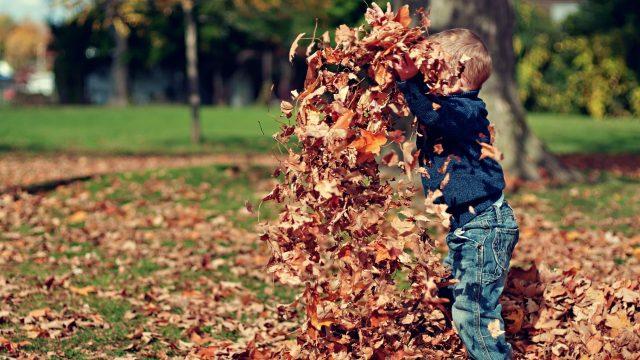 October Half Term & Halloween Activities in Oxfordshire