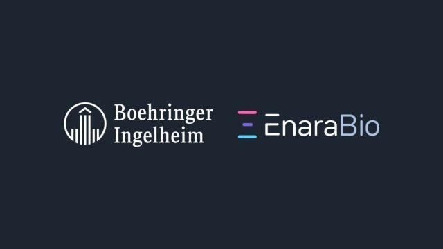 Oxford-based Enara Bio enters strategic collaboration with Boehringer Ingelheim
