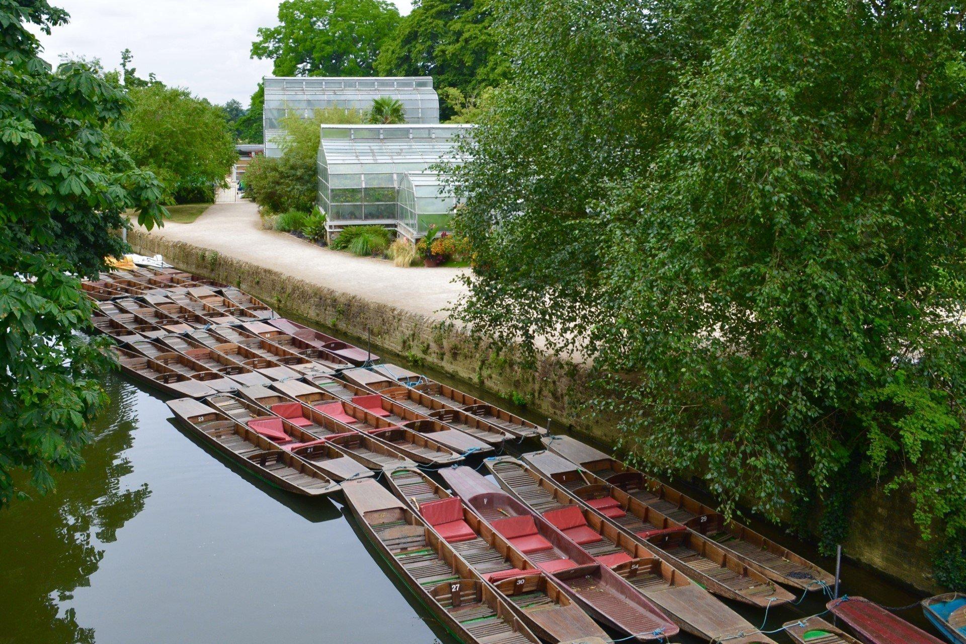 Oxford Botanic Garden - The Glasshouses