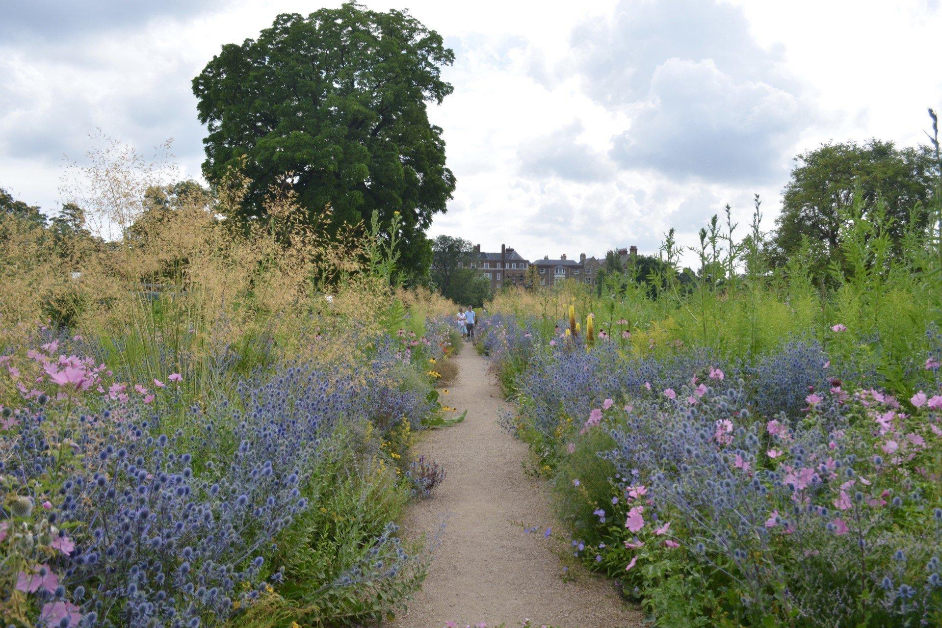 Oxford Botanic Garden - The Lower Garden