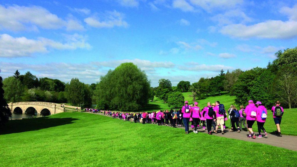 Pink Ribbon Walks for Brest Cancer Care at Blenheim Palace
