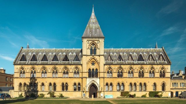 Pitt Rivers Museum and Museum of Natural History to reopen on 22 September