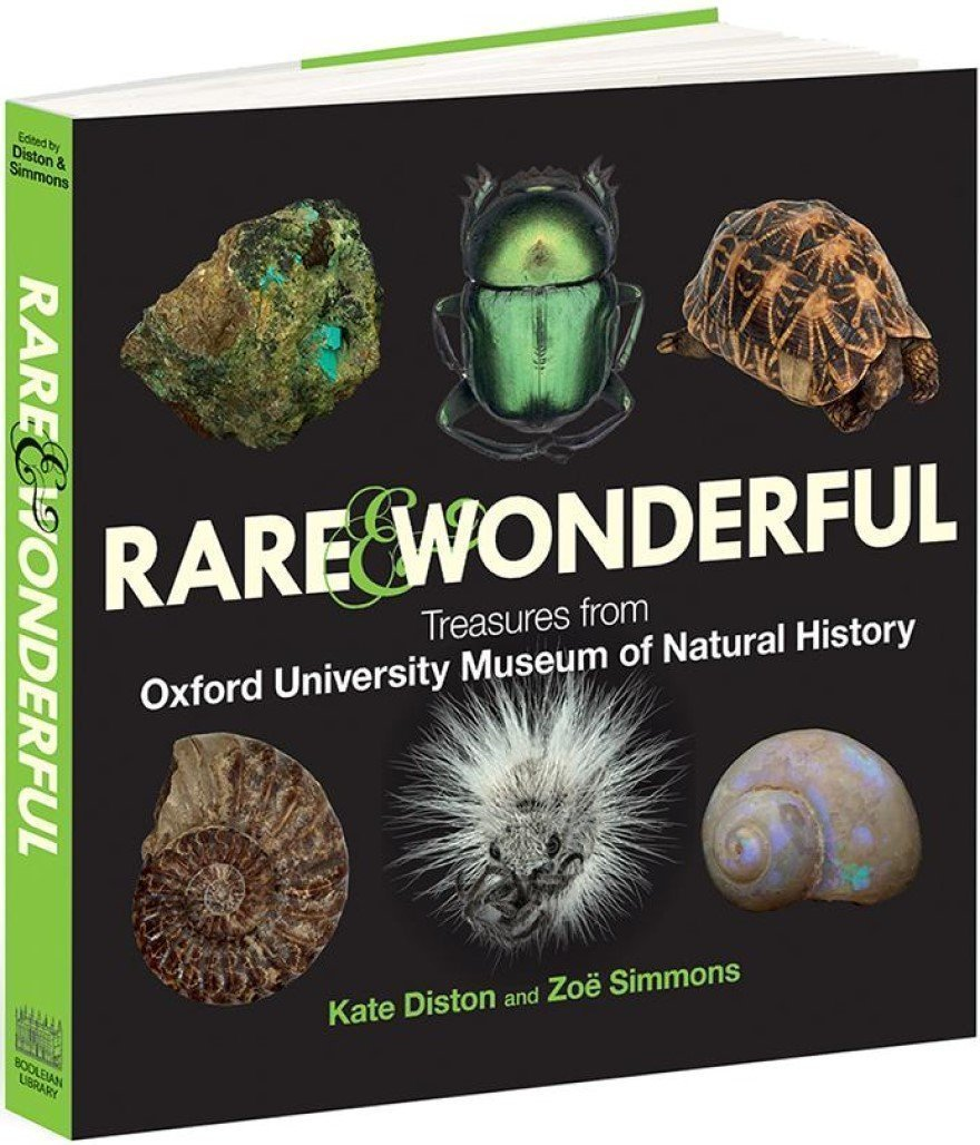 Rare & Wonderful Treasures from the Oxford University Museum of Natural History