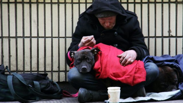 City council helps more than 250 rough sleepers into settled housing
