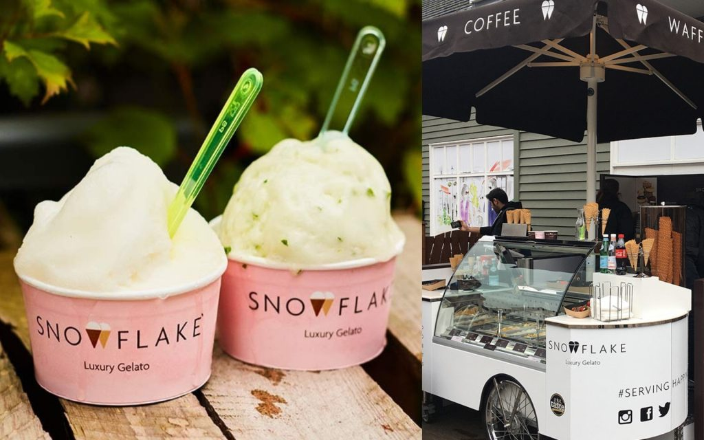 Snowflake Artisan Ice Cream