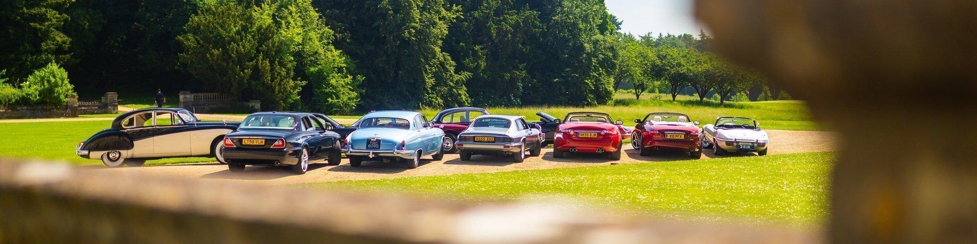 The Jaguar Festival 2019 - Heythorp Park