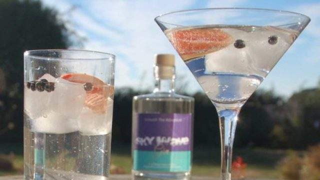 The Sky Wave Gin & Tonic Recipe