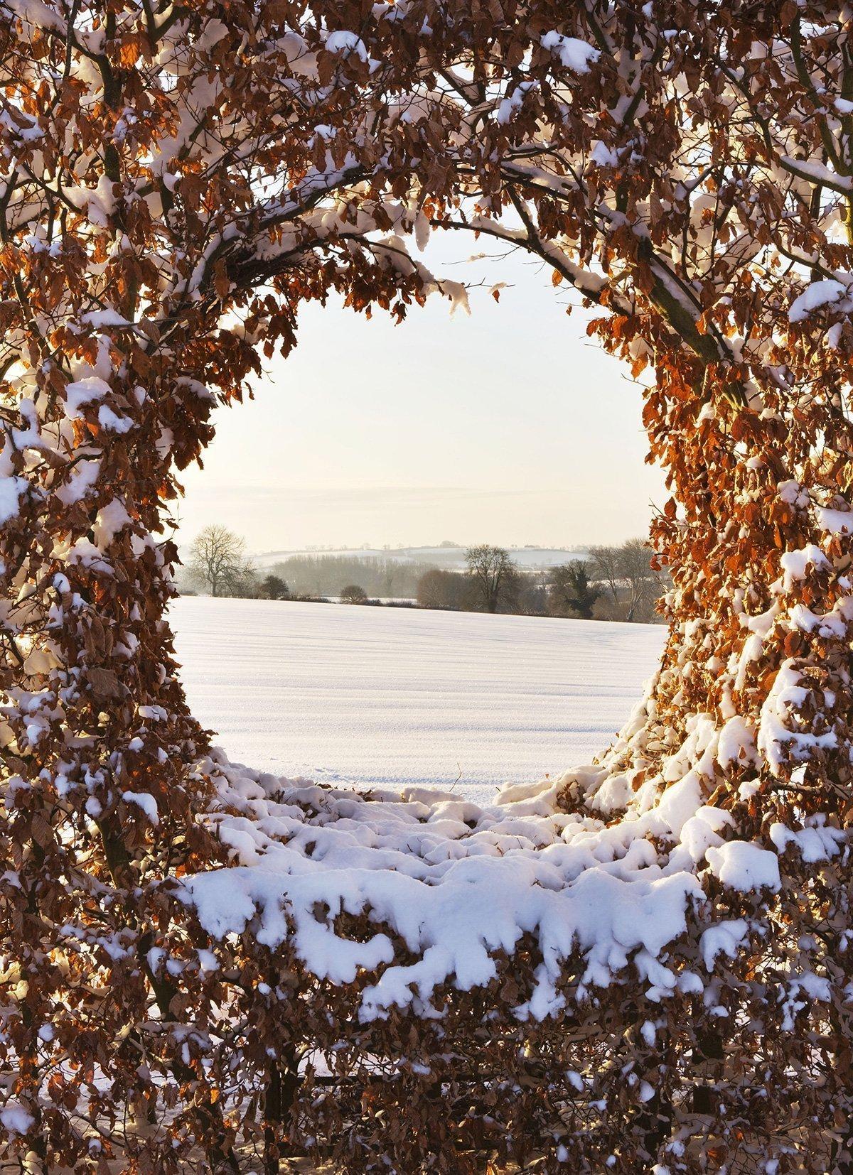 Thenford Gardens & Arboretum - Gallery Image 02
