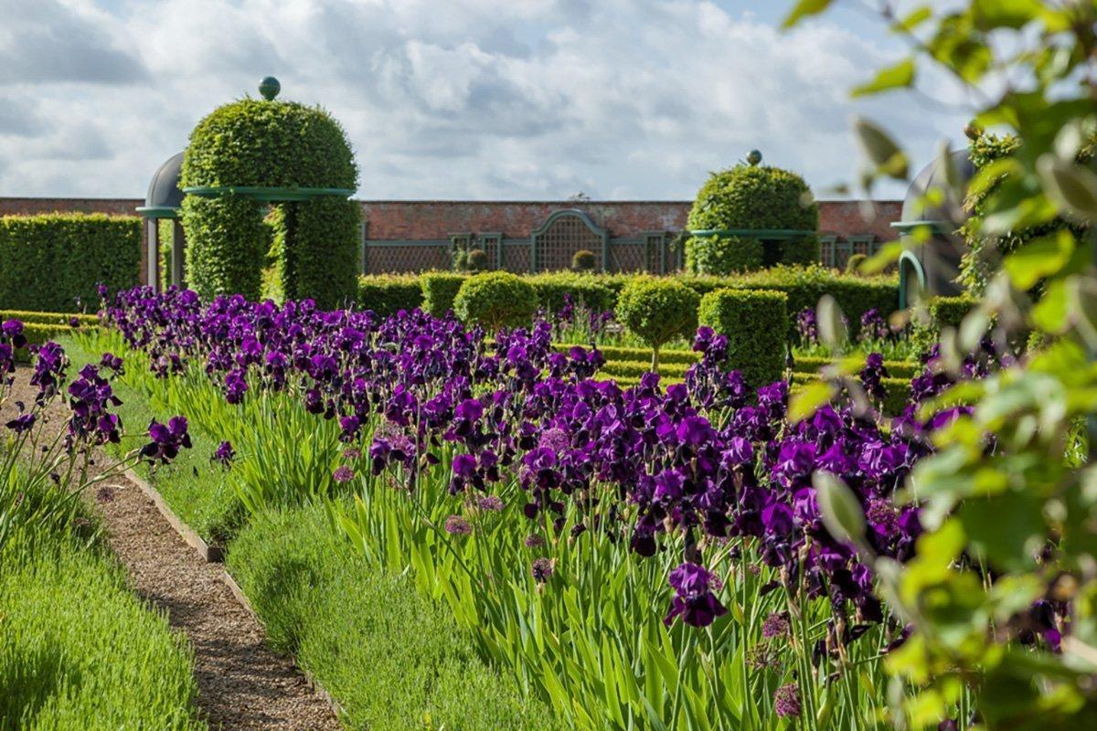 Thenford Gardens & Arboretum - Gallery Image 03