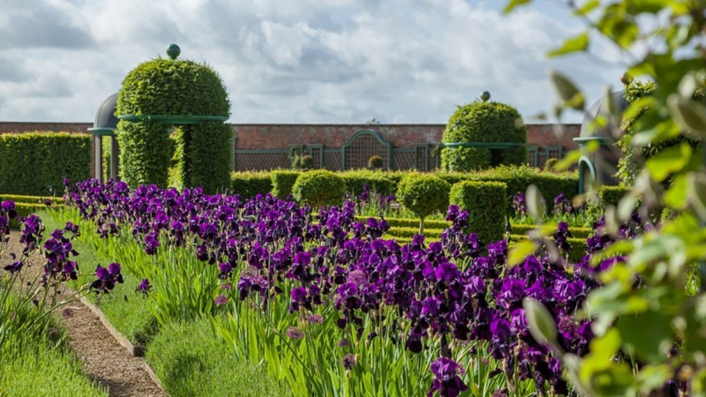 Thenford Gardens & Arboretum Garden Open days